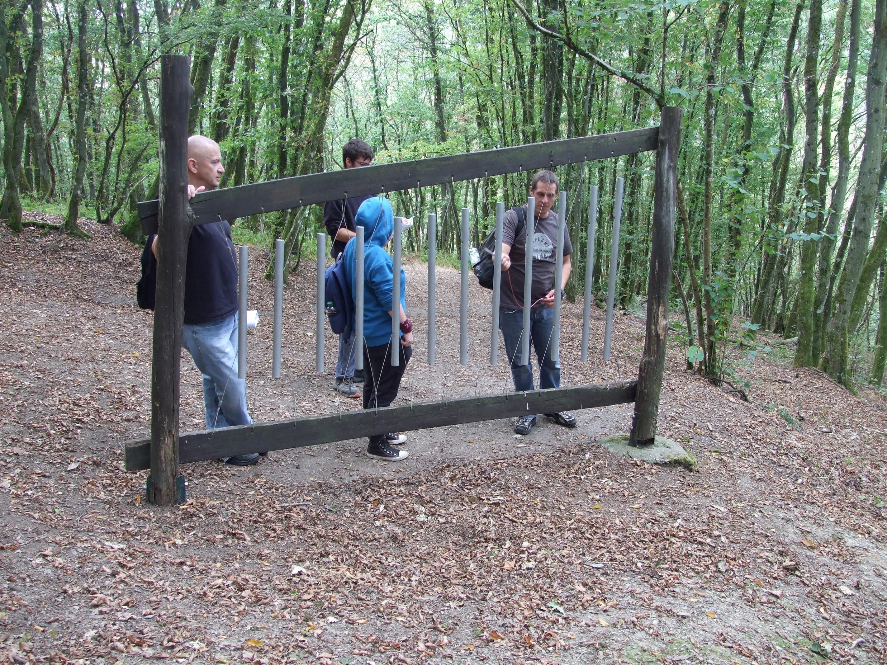 Erlebnispädagogische Maßnahme im  Waldjugendheim Dasburg